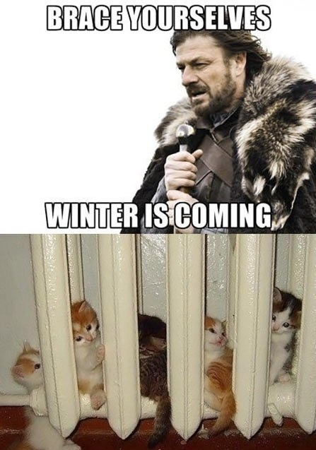 game of thrones funny memes (1)
