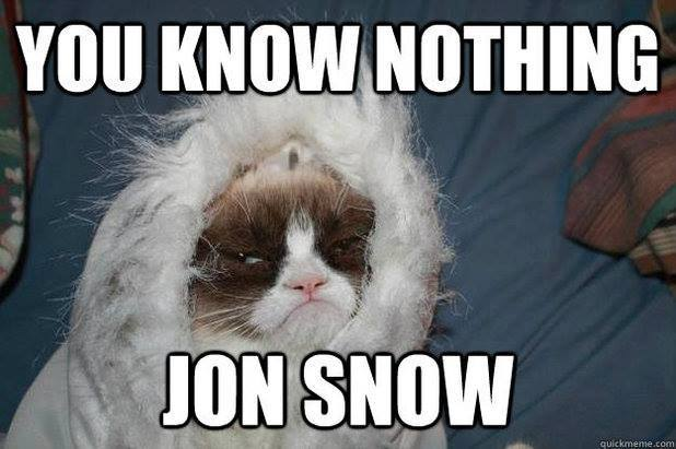 game of thrones funny memes grumpy cat