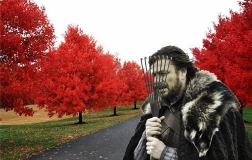 game of thrones funny memes ned stark