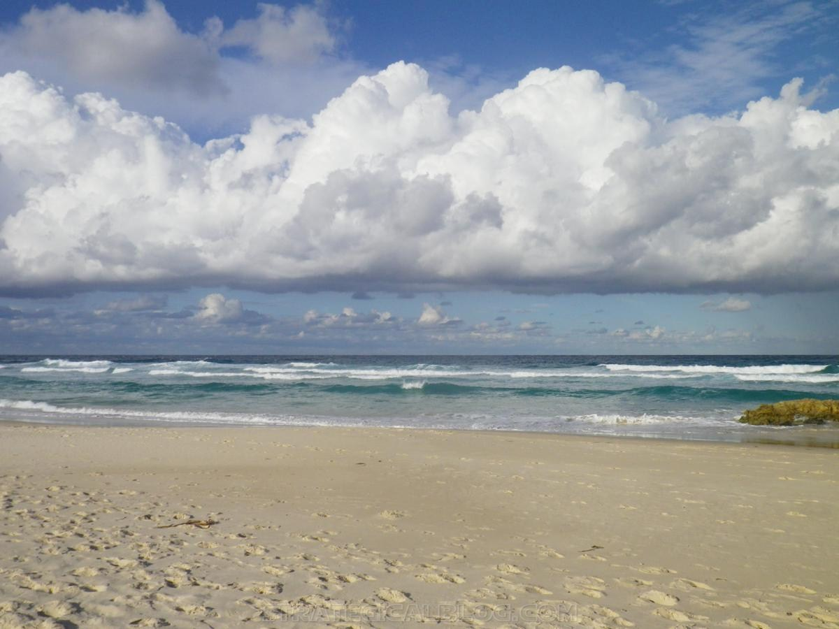 stradbroke island australia travel strategical (88)