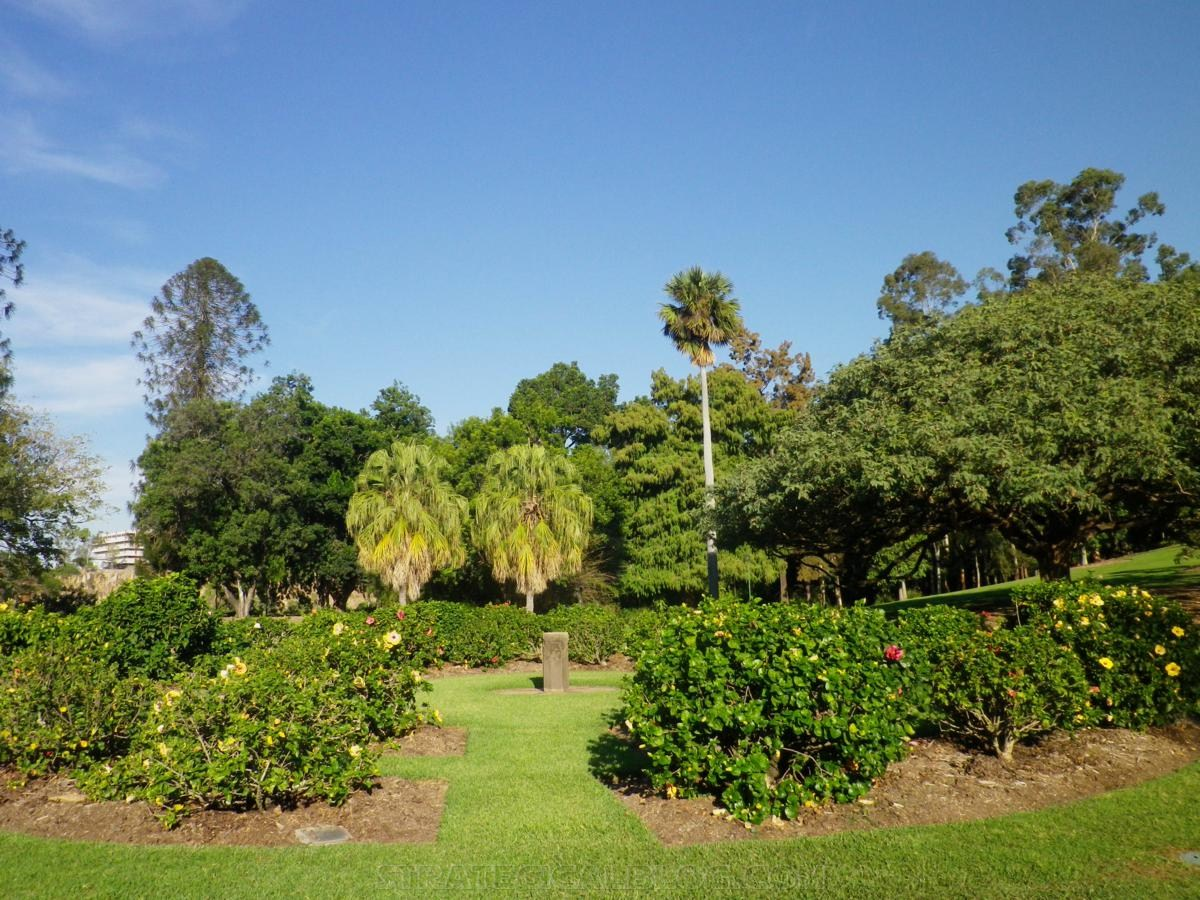 City Botanic Gardens Brisbane (15)