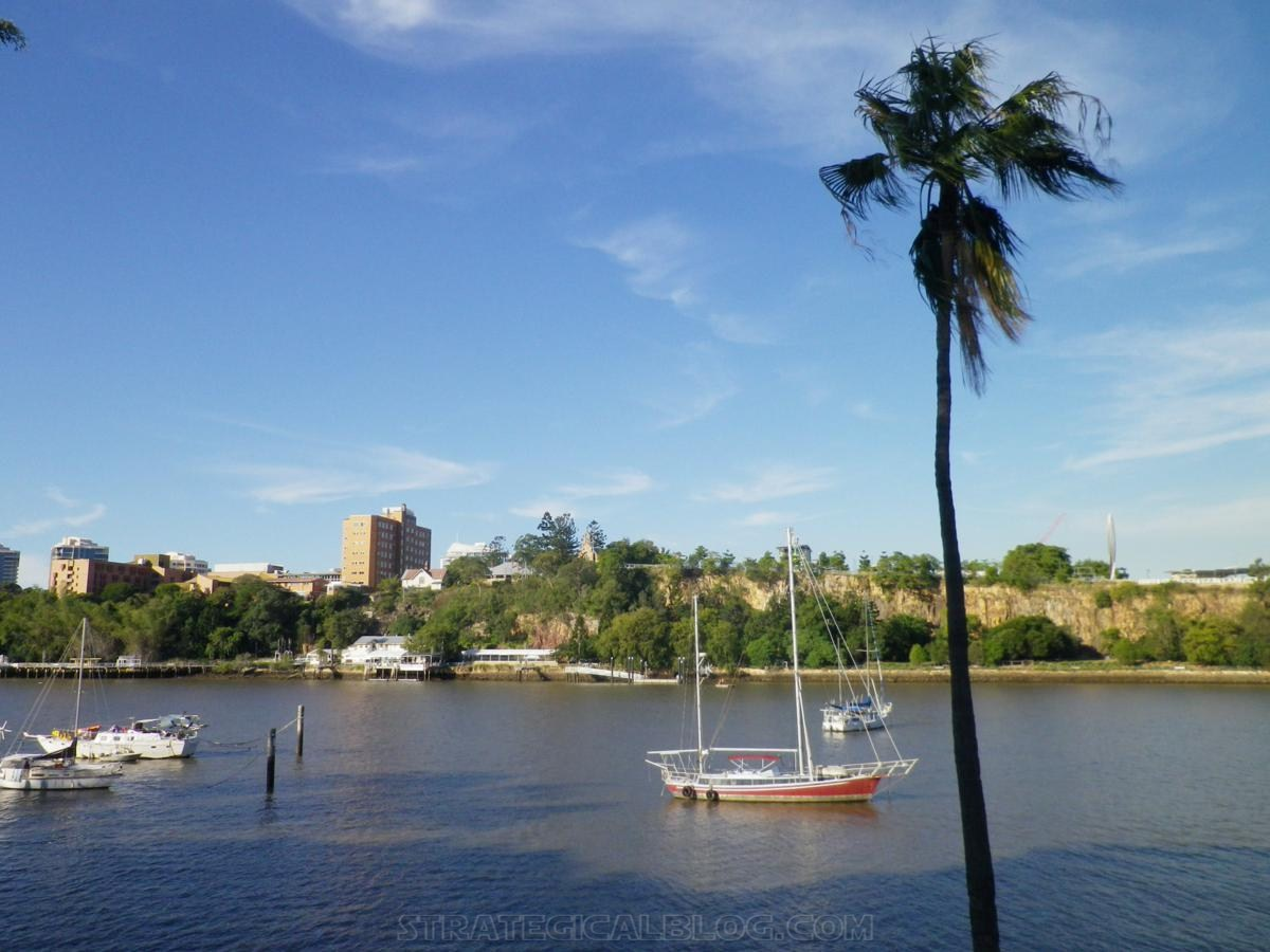 City Botanic Gardens Brisbane (17)