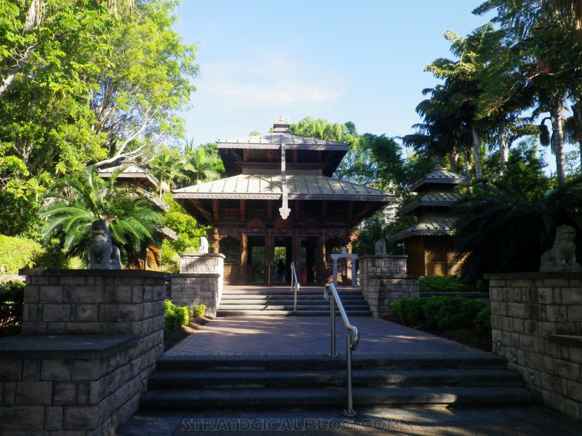City Botanic Gardens Brisbane (27)