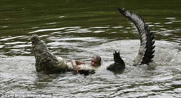 dangerous crocodile man