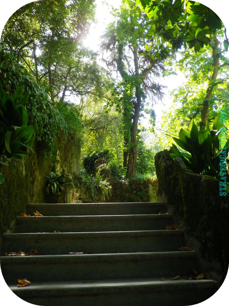 quinta regaleira sintra magic garden (8)