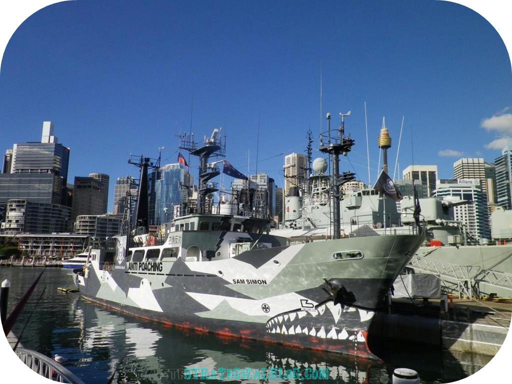 10 places to see in sydney australia ships (1)