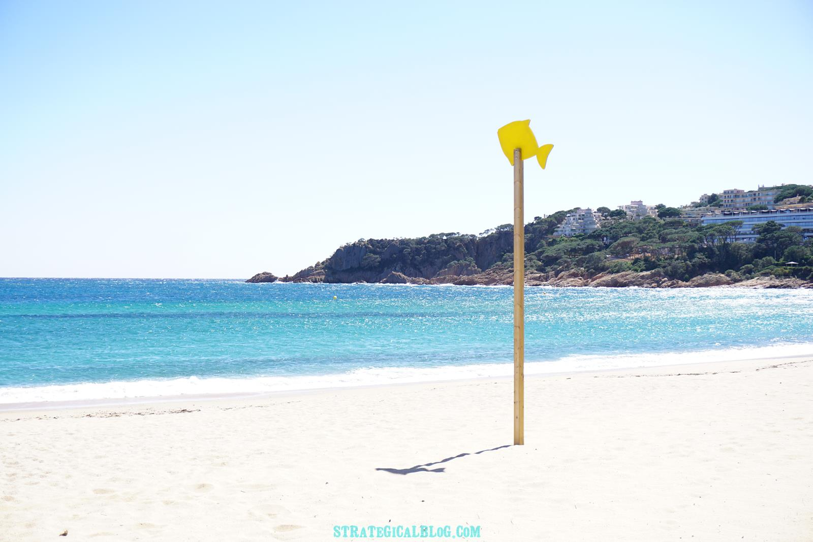 a-yellowfish-costa-brava